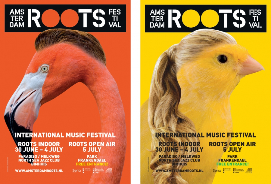 Roots Birds text 2